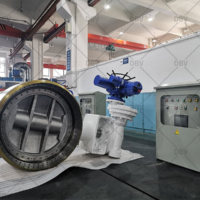 DBV valve factory1