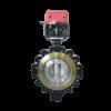 lug type butterfly valve-WCB
